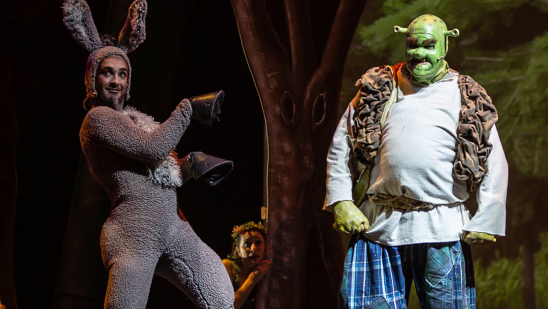 Article heading image for I LIKE THAT BOULDER | Townsville's Shrek & Donkey Joined Cliffo & Gabi Today