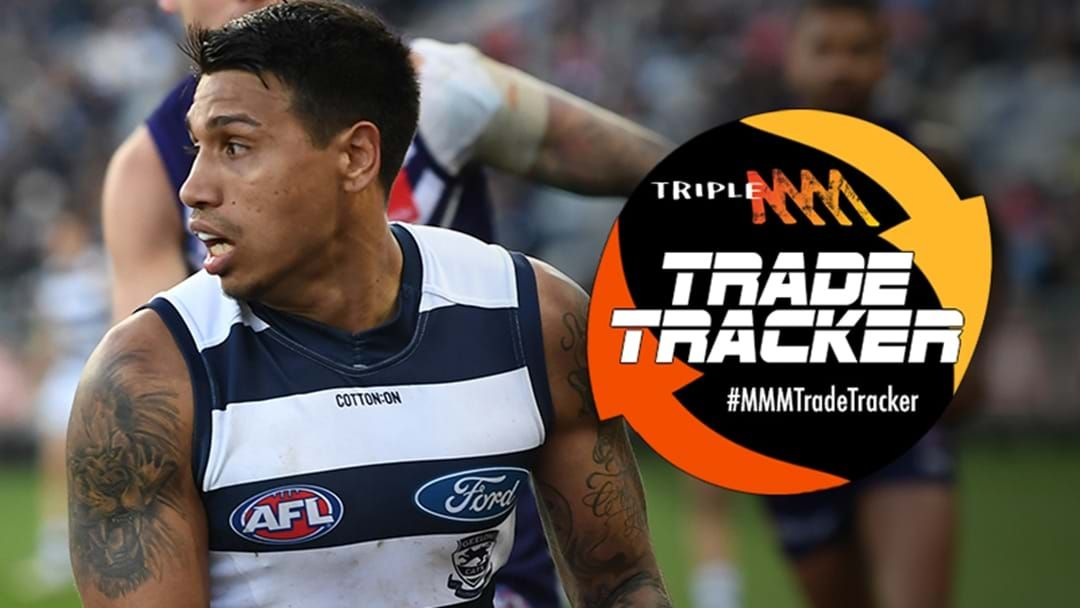 "Article heading image for Tim Kelly Says He ""Can't See Himself Anywhere"" Other Than Geelong Right Now"