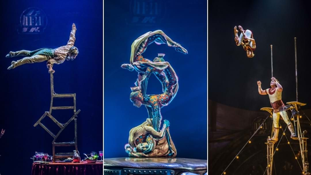 Article heading image for Cirque Du Soleil Is Returning To Brisbane With KURIOS And It Looks Incredible!