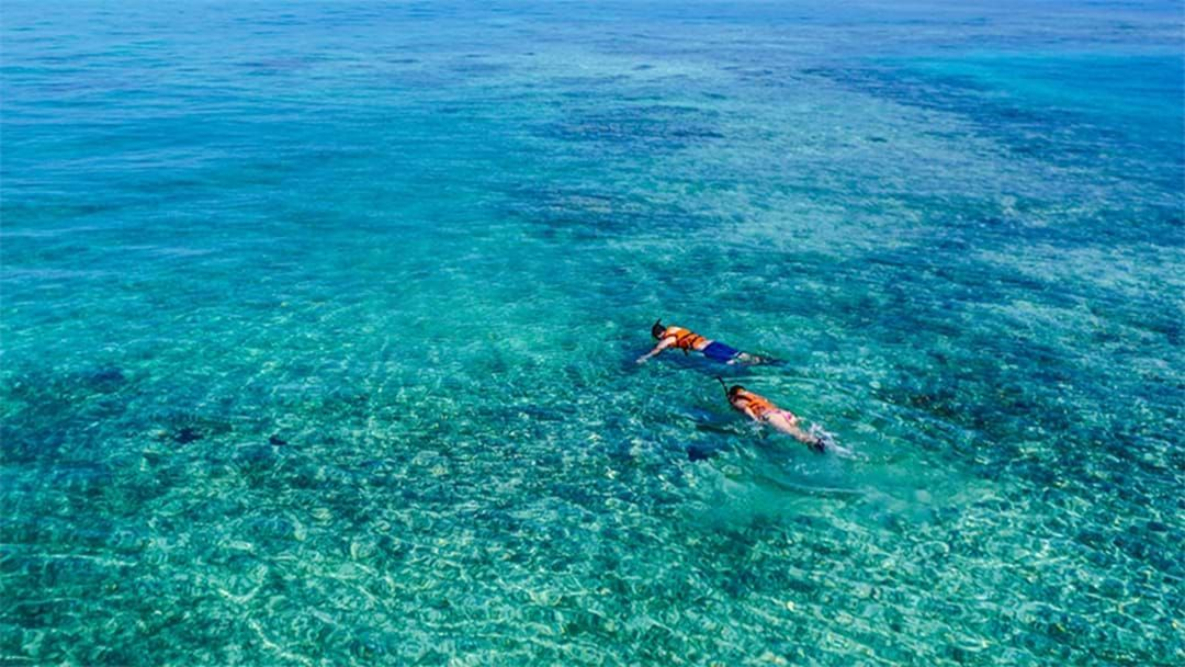 Article heading image for The Best Snorkelling Spots Around Perth