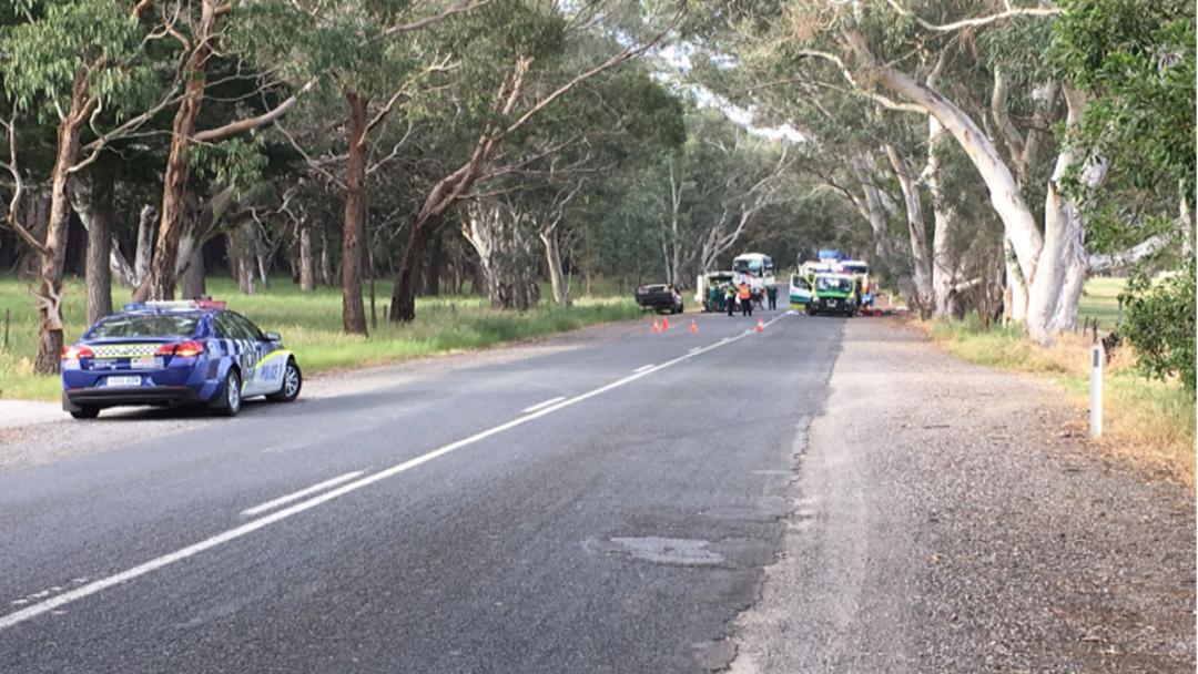 Article heading image for 7 Year Old Boy Dies In Crash At Kuitpo