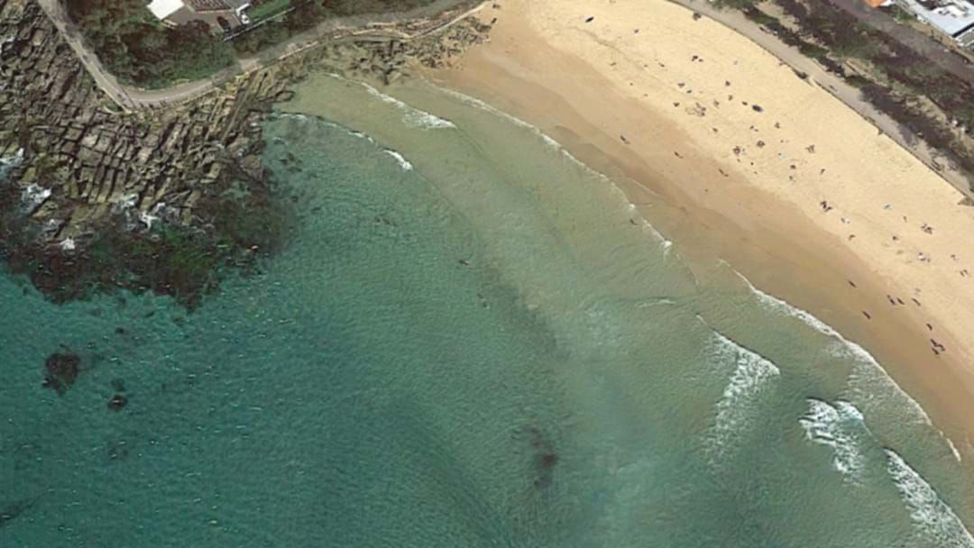 Article heading image for Surfer's Lucky Escape After South Steyne Beach Shark Attack