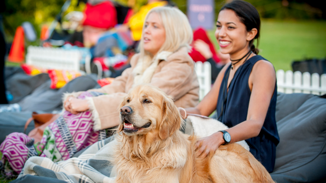 Article heading image for Melbourne's Getting A Dog Friendly Outdoor Movie Night