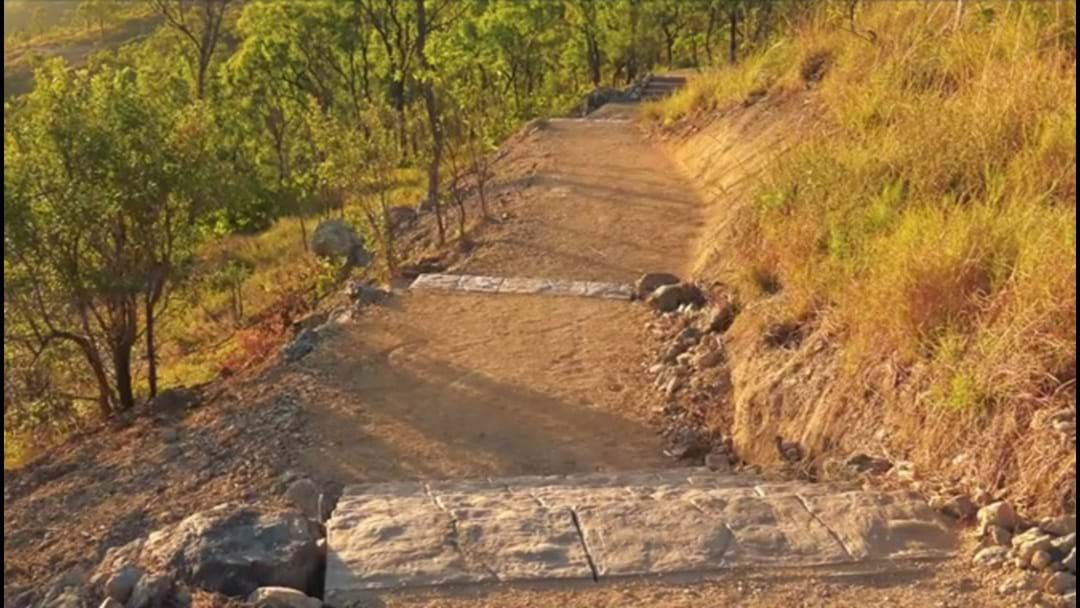 Article heading image for 650 Steps Are Waiting For You At The New Mount Louisa Walking Track