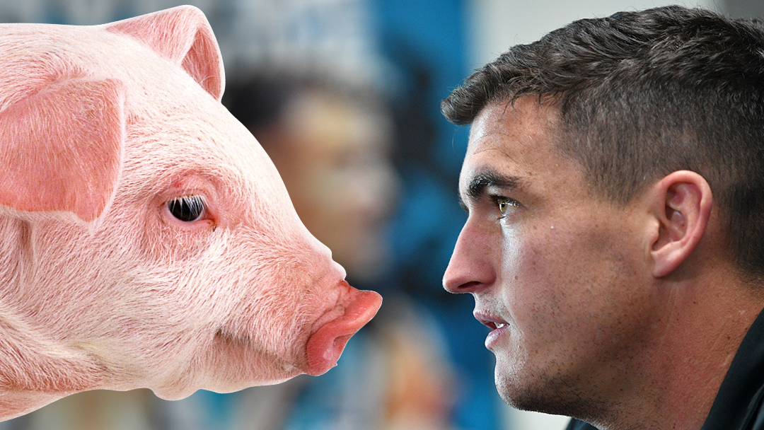 Article heading image for Tom 'The Pig' Rockliff Revealed He Gets Oinked At Every Time He Walks Into Port's Change Rooms