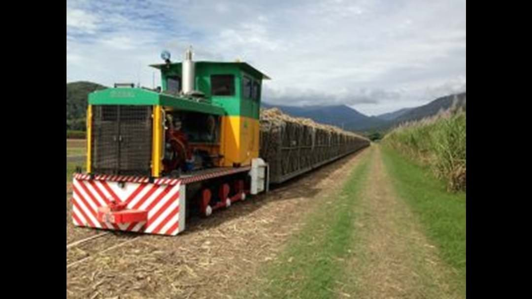 Article heading image for Cane trains hit the tracks