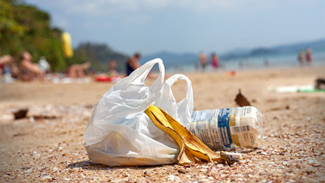Article heading image for How You Can Get Involved This Clean Up Australia Day