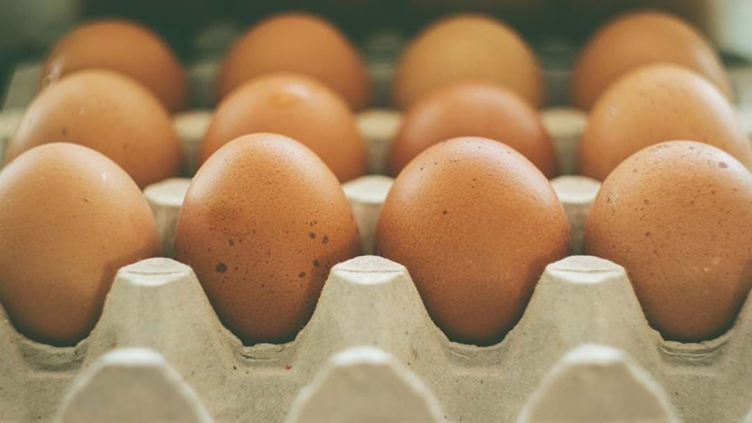 Article heading image for Food Recall: More Eggs Pulled From The Shelves Following Contamination Fears