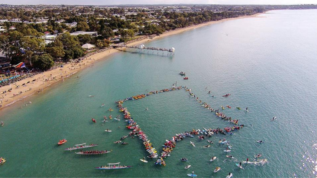 Article heading image for Paddle Out For Whales Is Still Going Ahead This Year With New Rules!