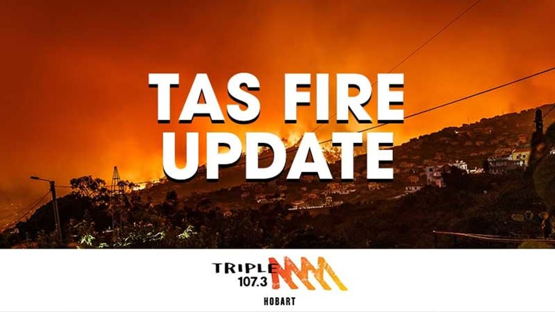 Article heading image for Update on the Tas Bushfires