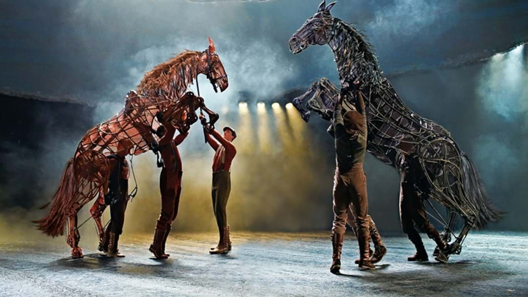 Article heading image for WarHorse The Play Had Me in Tears