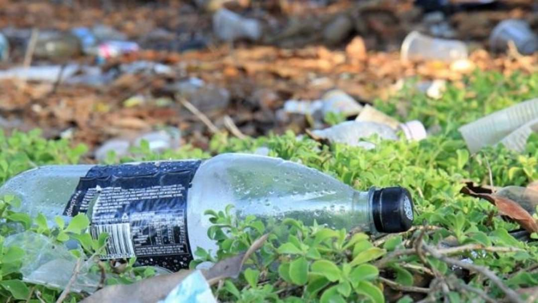 Article heading image for It's Time For Campaspe Residents To Share Their Opinion On Littering