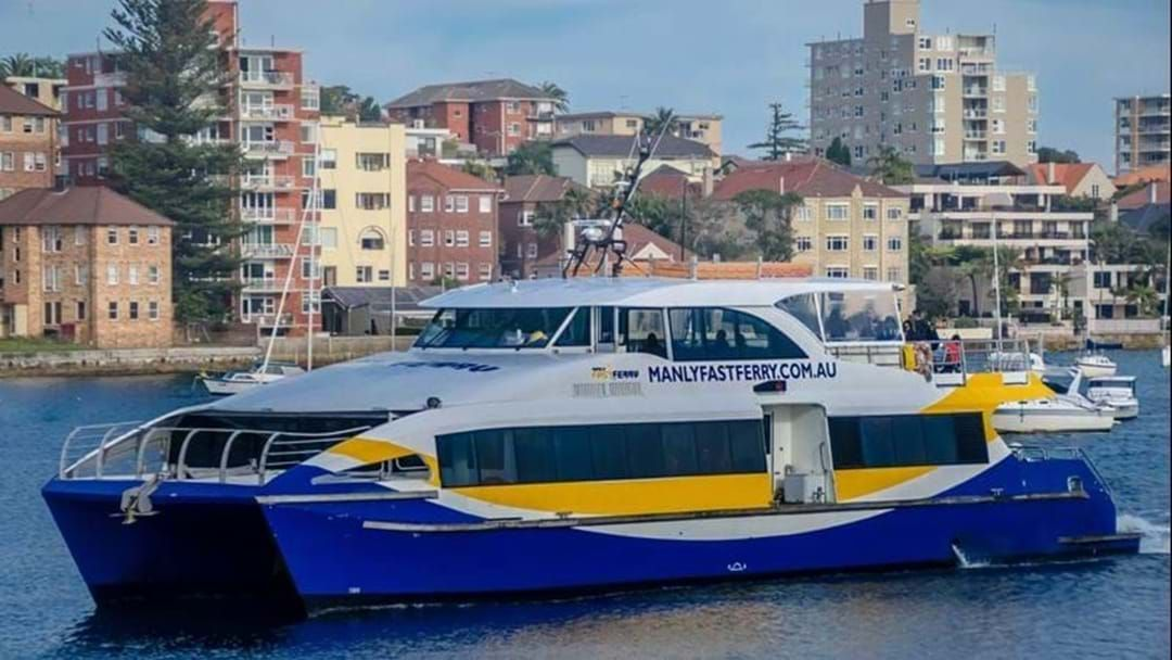 Article heading image for All Manly Ferry Services Suspended As CFMEU Block Boat Access