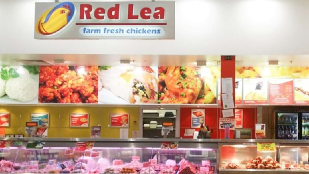 Article heading image for Hundreds Of Red Lea Chickens Factory Workers Lose Their Jobs