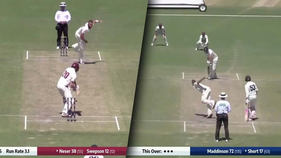 Article heading image for Umpires Turned Down Two Of The Plumbest LBWs You'll Ever See In The Sheffield Shield