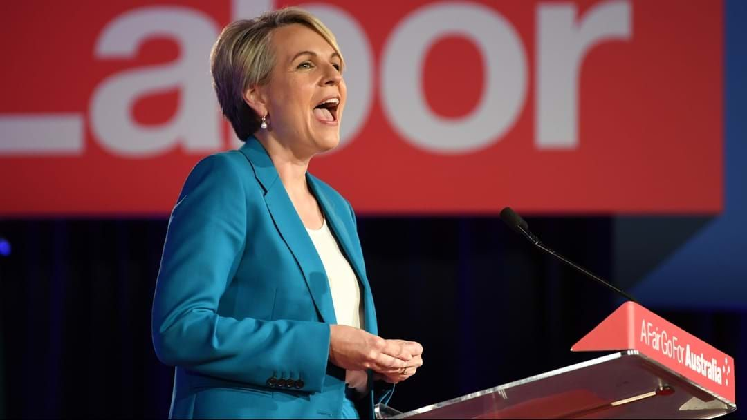 Article heading image for Tanya Plibersek Won't Run For Labor Leadership