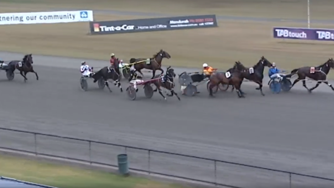 Article heading image for Harness Driver Saves His Bacon