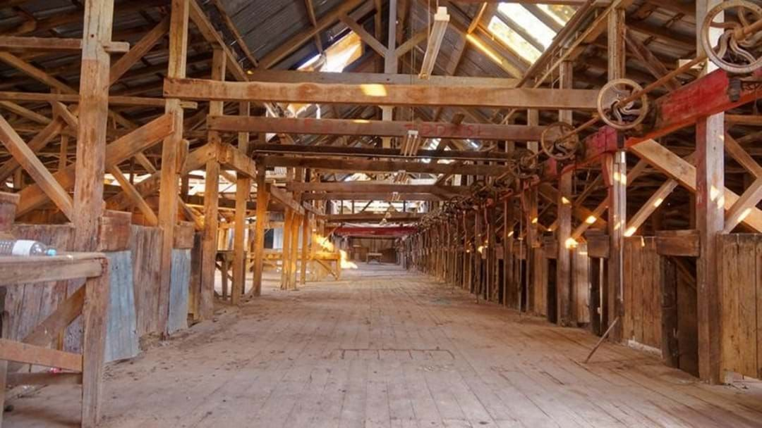 Article heading image for Here's How You Could Save The Toganmain Woolshed!