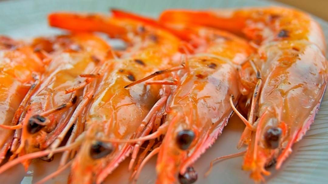 Article heading image for Is It Okay To Eat Prawn 'Poo'?: An Investigation