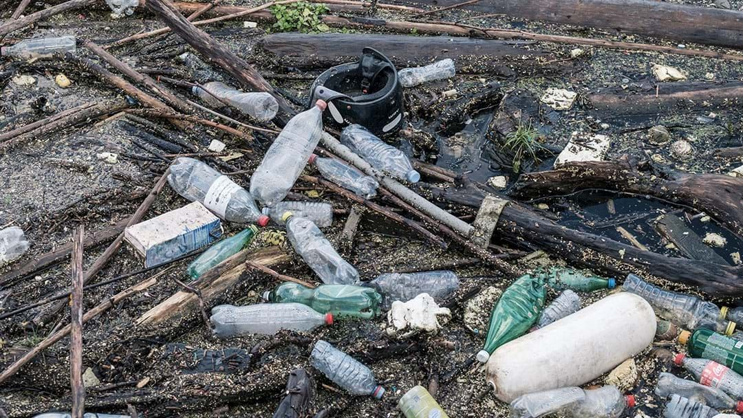 Article heading image for The European Parliament Has Voted To Ban Single-Use Plastics