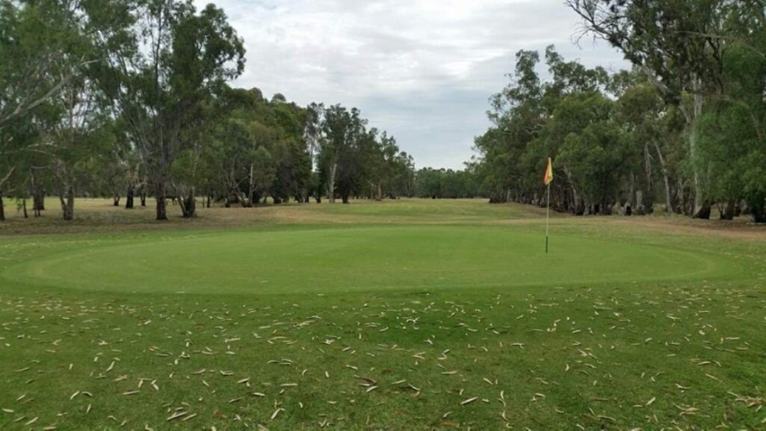 Article heading image for Back 9 Golf Course To Continue Operation Under Echuca Neighbourhood House Inc