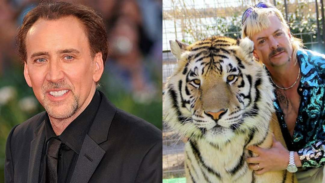 "Article heading image for Nicolas Cage Is Set To Play Joe Exotic In A New ""Tiger King"" Series So At Least 2020 Got One Thing Right"