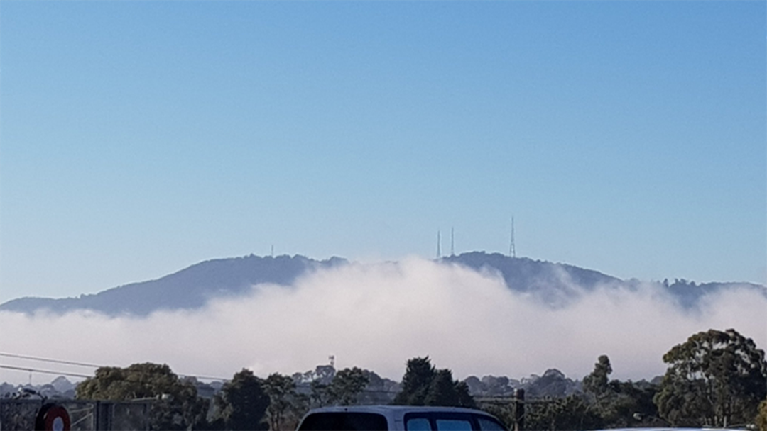 Article heading image for Thick Fog Causes Flight Chaos In Melbourne