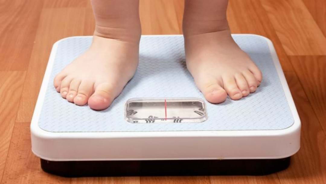 Article heading image for Hunter Schools Given Scales To Weigh Kids