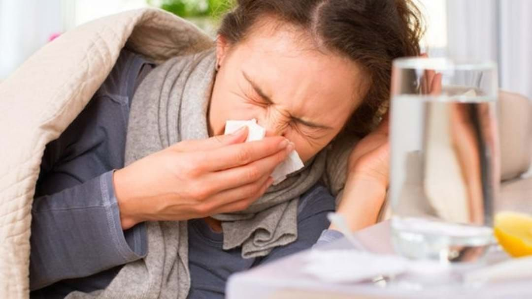 Article heading image for Brace Yourselves WA... Flu Season Has Arrived!