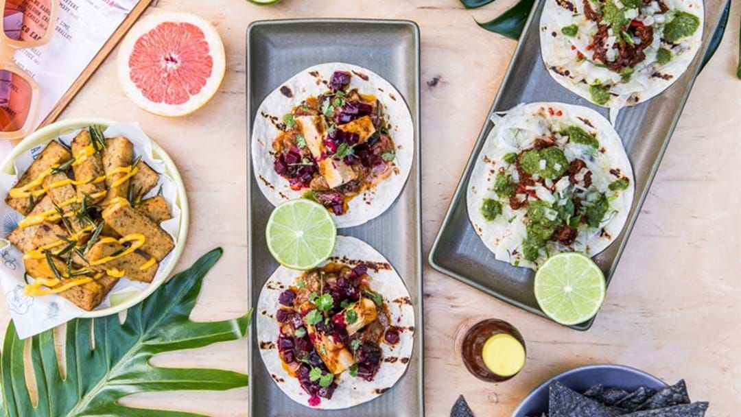 Article heading image for There's A Bottomless Tacos Bushfire Fundraiser Happening In Sydney Tonight!