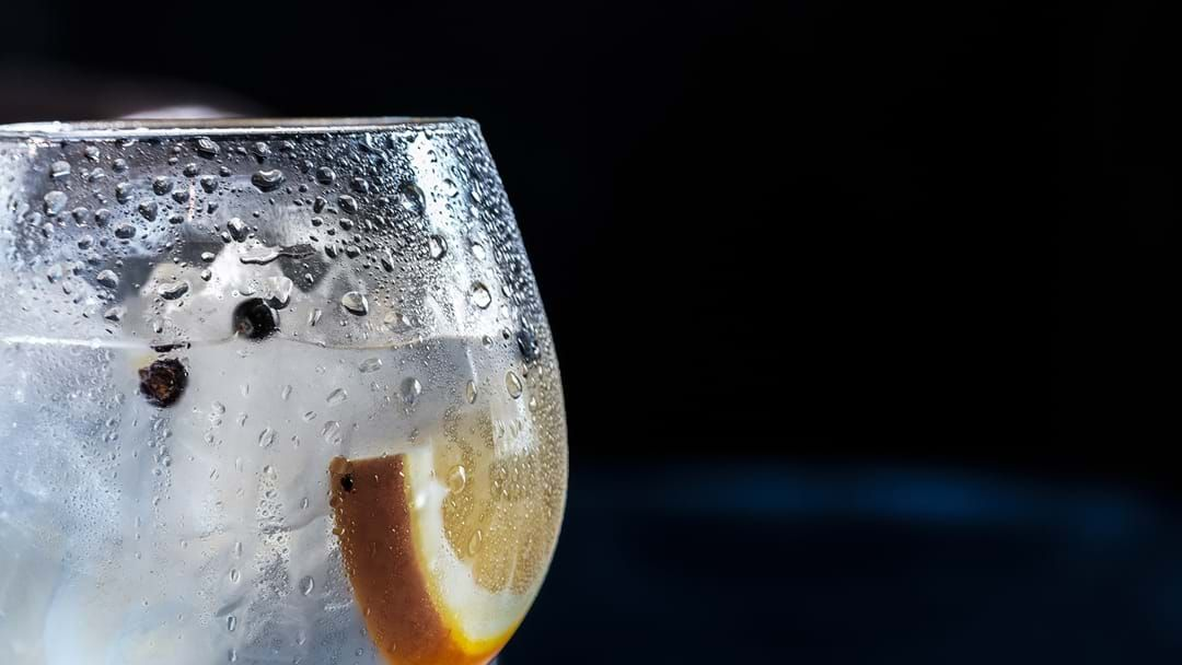 Article heading image for Melbourne's Gin Festival, Juniperlooza, Is Back!