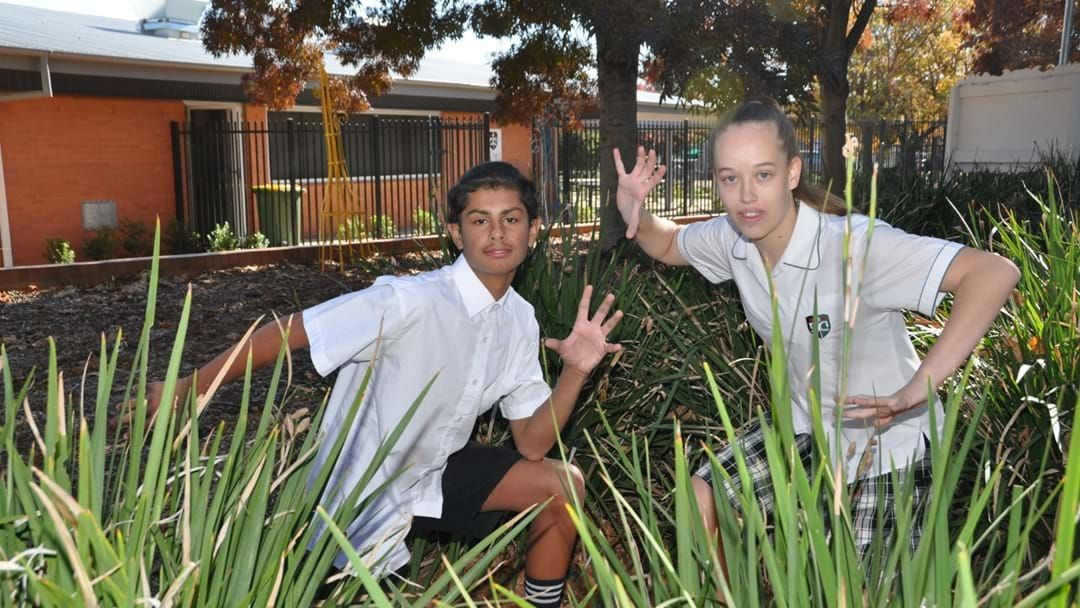 Article heading image for Dubbo Students Make State Dance Group