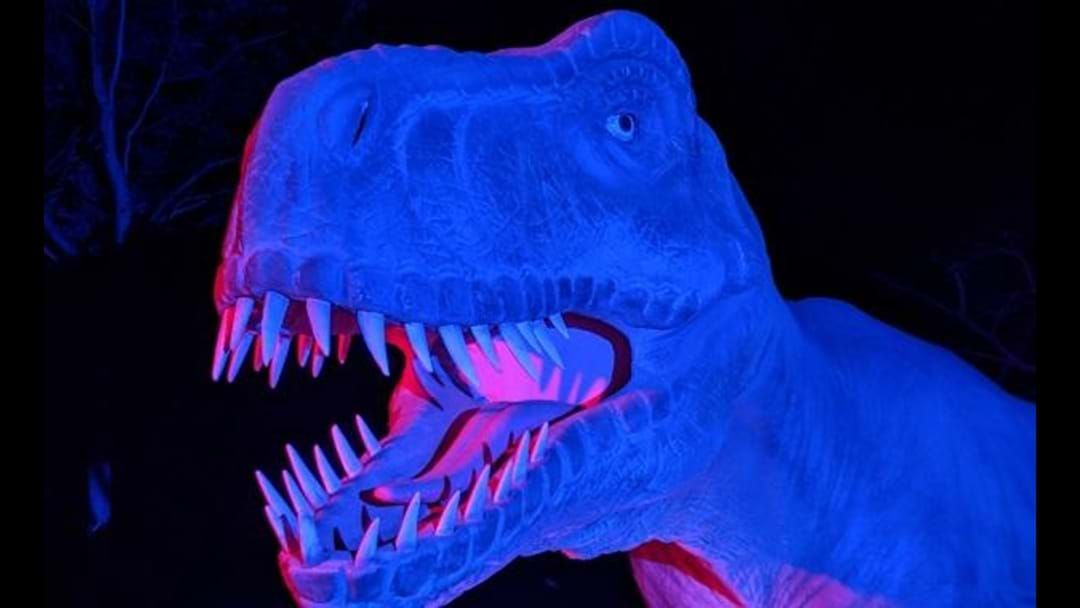Article heading image for Werribee Zoo's Wild Nights Are Back With Life Sized Dinosaurs, Mulled Wine & Toasted Marshmallows