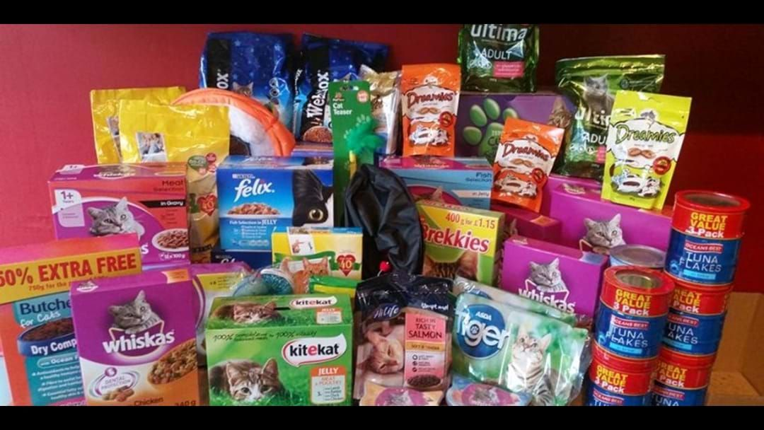 Article heading image for Jay & Dave's Pet Food Drive For Townsville