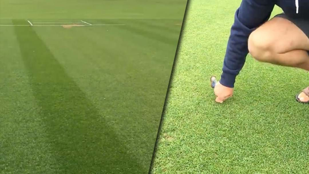 Article heading image for Kiwi Bloke Nails A Tony Greig Impression As He Inspects The Greenest Wicket You'll Ever See