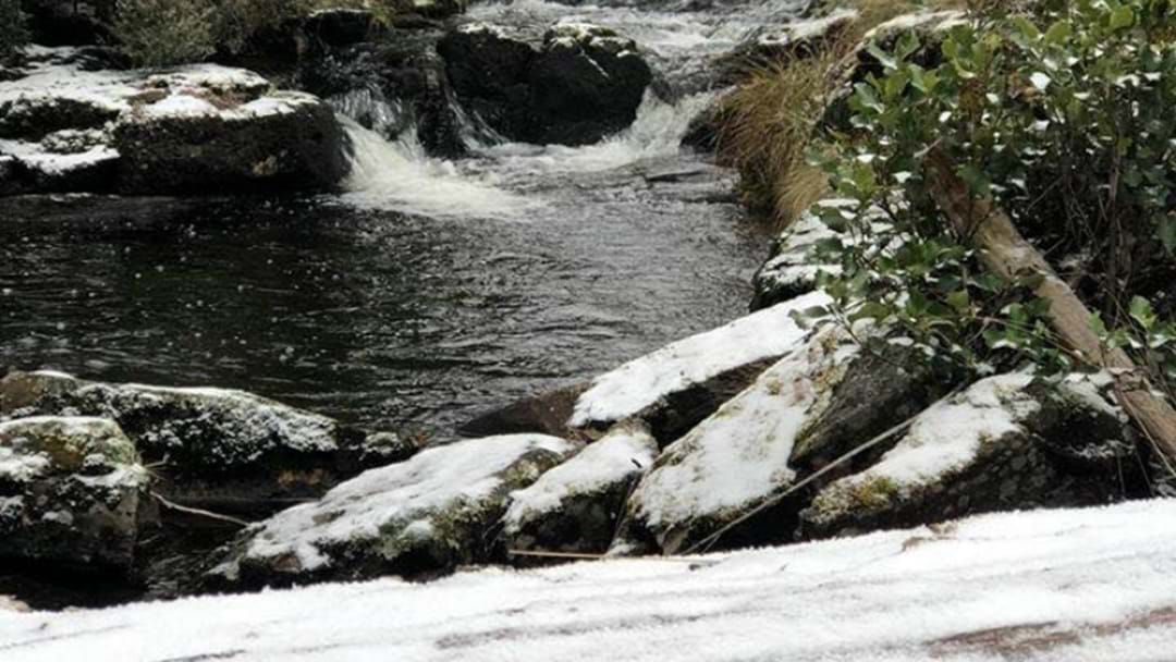 Article heading image for First Snow Of The Season Forecast For Barrington Tops!