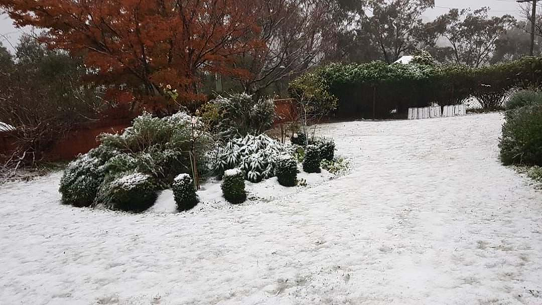 Article heading image for Snow Blankets The Blue Mountains As Sydney Set For Wild Winds