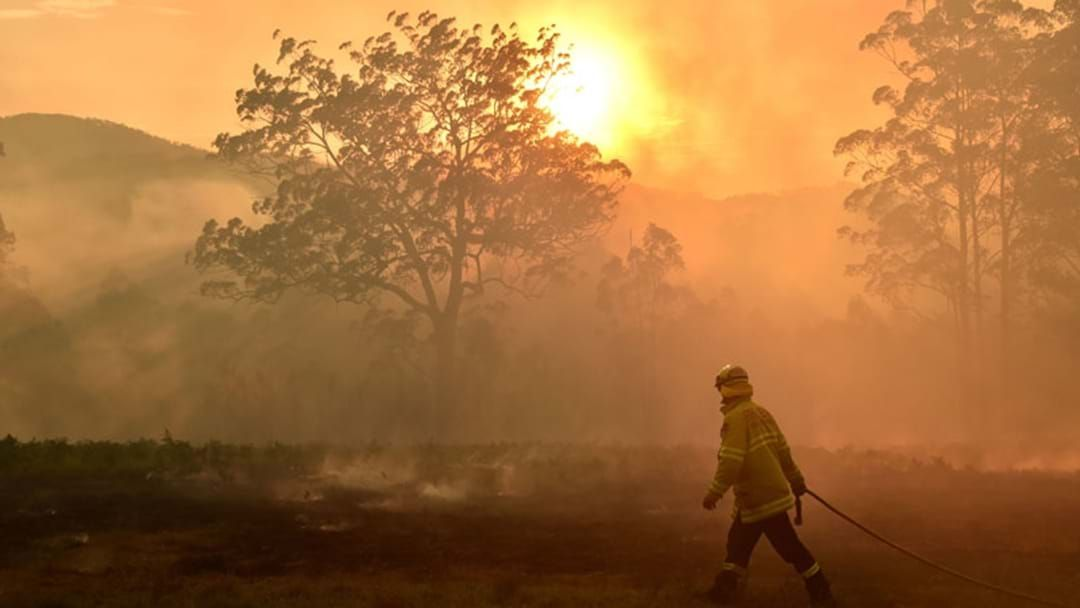 Article heading image for Victoria's Code Red Bushfire Warning Is Massive: Here's Why
