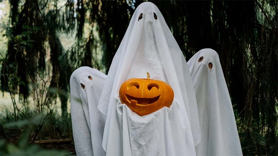 Article heading image for Melbourne's Guide To Halloween And Trick Or Treating In 2020