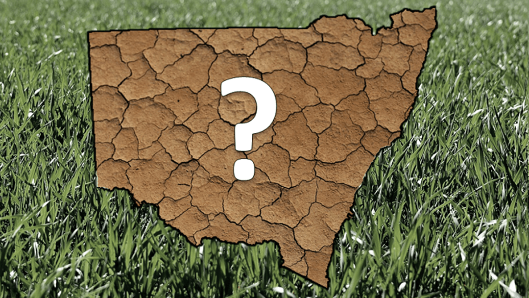 Article heading image for How well do you know this drought?