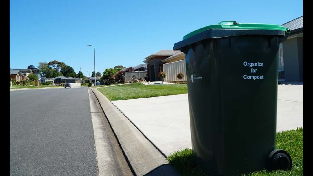 Article heading image for Council bins green waste fee