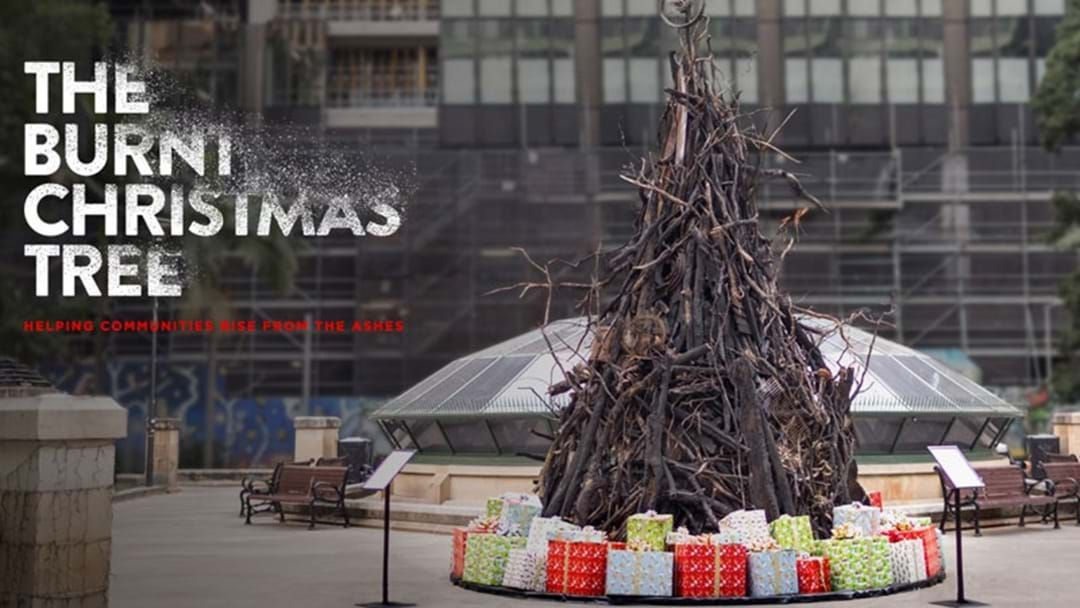 Article heading image for A Burnt Christmas Tree Has Been Set Up In Wynyard To Raise Money For Bushfire Relief