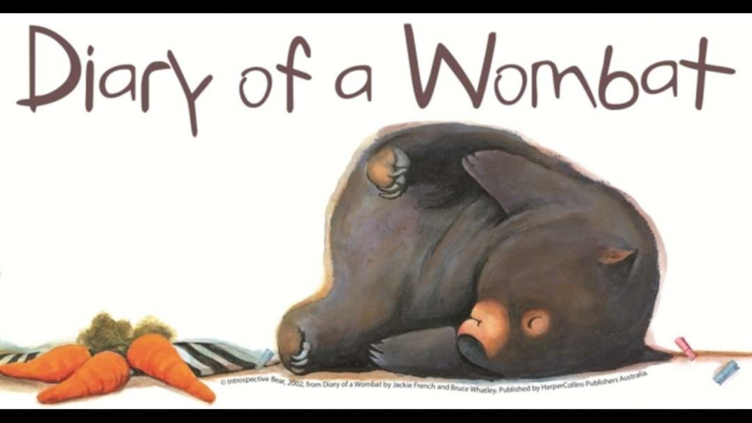 Article heading image for Diary of a Wombat Comes To Esperance