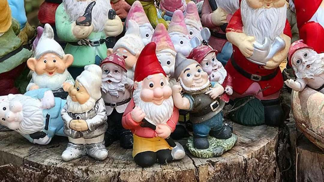 Article heading image for Gnomesville Has Flooded And Not Every Gnome Has Survived