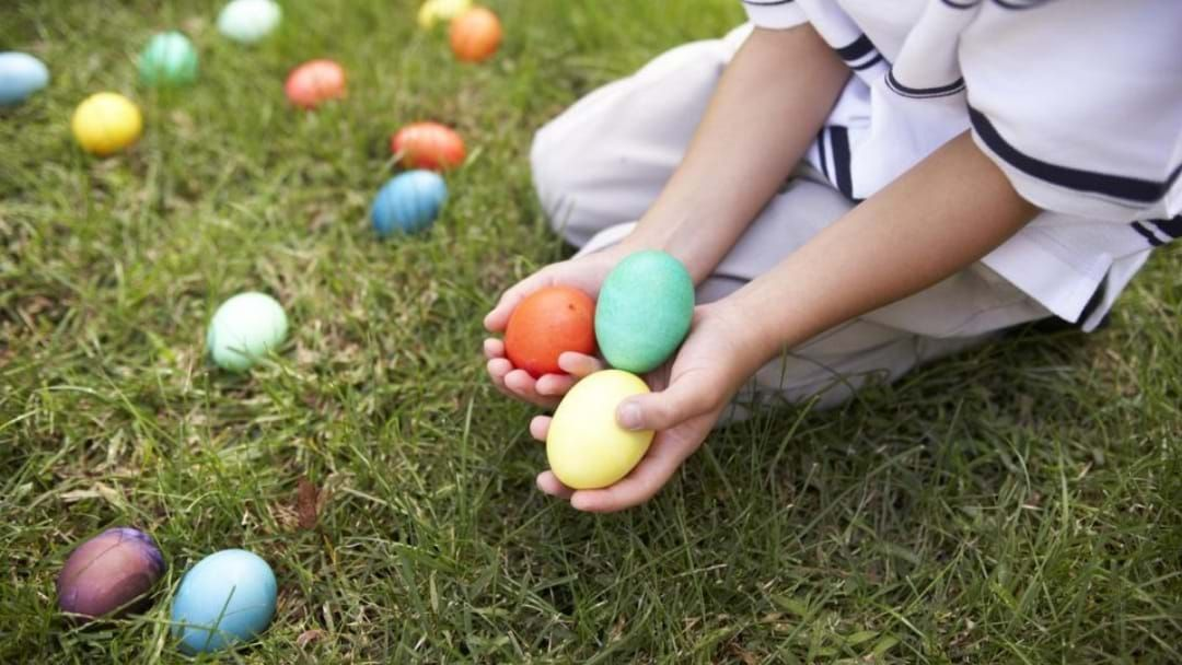 Article heading image for Easter Egg-Stravaganza Egg Hunts Are Happening In Shepparton!