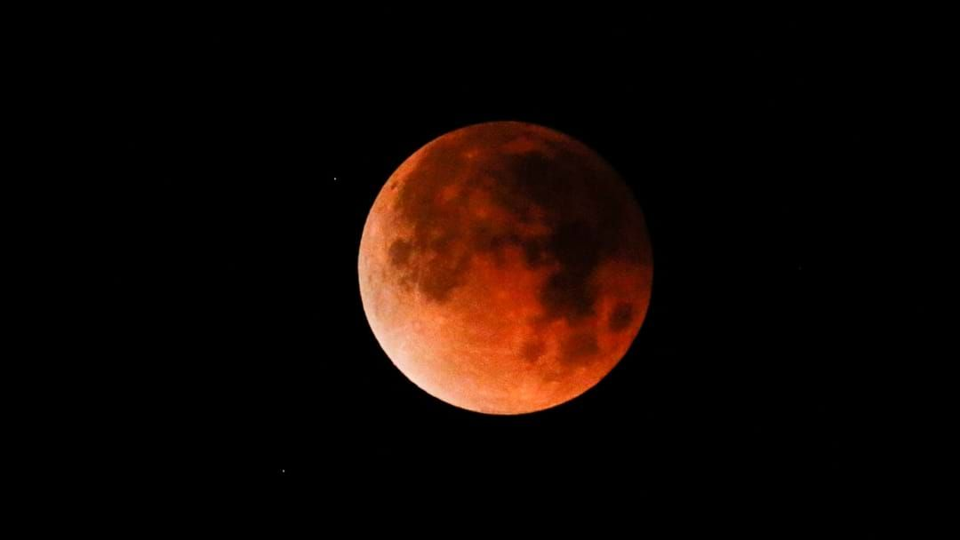 Article heading image for The Last Lunar Eclipse of the Year Will be Visible in Bendigo This Week