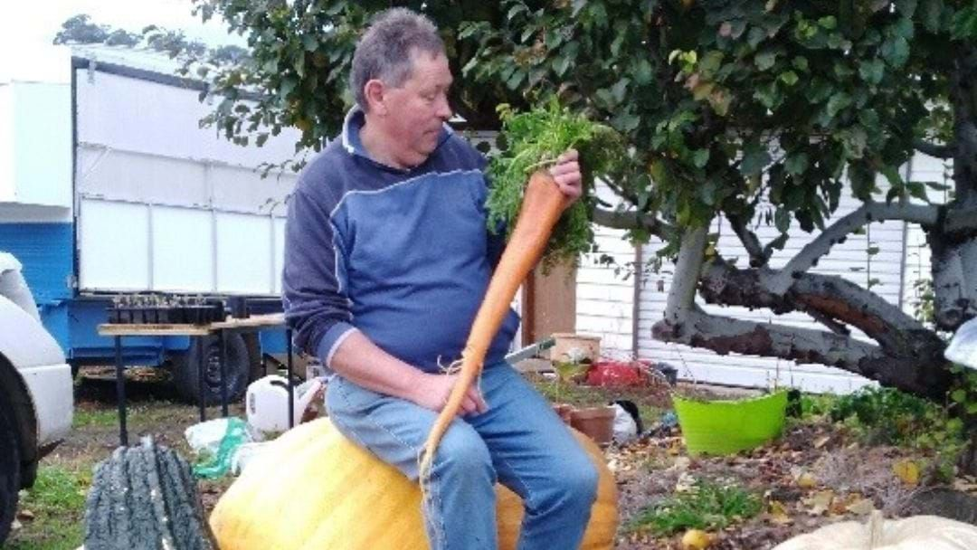 Article heading image for We Think We've Found The Longest Carrot In Tassie!