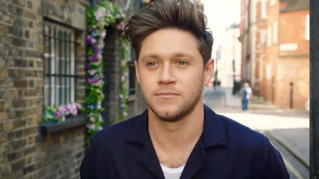 Article heading image for Niall Horan Channels Pure 90's Rock Pop In New Hit 'Nice To Meet Ya'