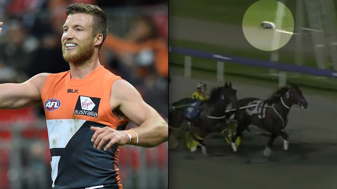 Article heading image for Former AFL Player Rhys Palmer Reportedly Facing Life Ban From Racetracks After Throwing Shoes At Horses