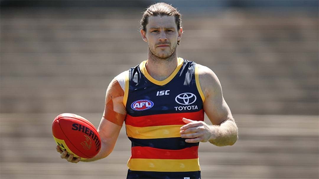 Article heading image for Matty Nicks Gives An Update On Bryce Gibbs And His Chances Of A Game This Week
